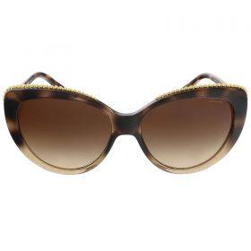 Coach HC8157 533813 Glitter Dark Tortoise Cat Eye sunglasses (2)